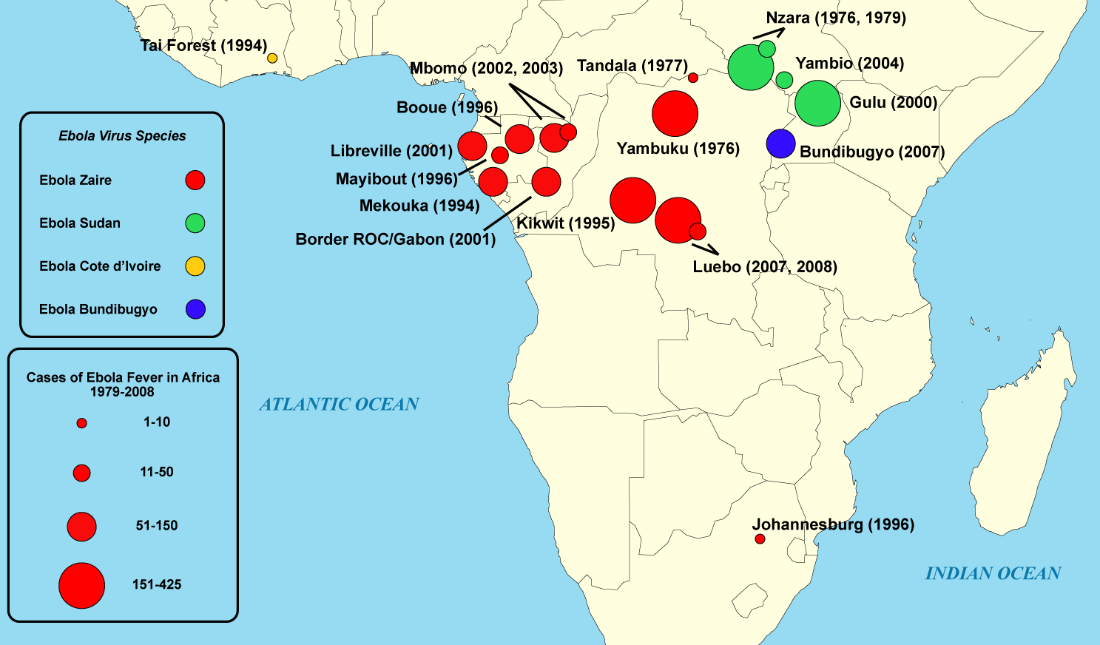 Cases of ebola fever in Africa from 1979 to 2008.