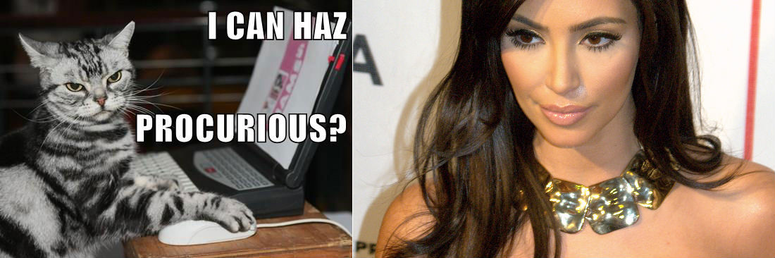 I Can Haz Cheezburger and Kim Kardashian in a beautiful example of the riches the Internet brings...