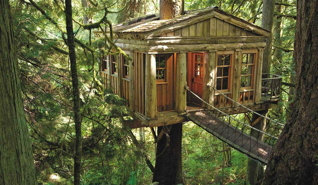 Treehouses UPMG2016